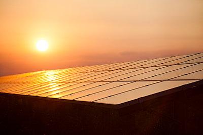 Solar panel - p1057m1058175 by Stephen Shepherd