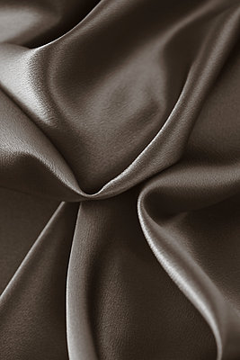 Brown silk - p495m906978 by Jeanene Scott
