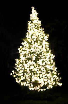 Christmas tree at night - p1237m2124995 by Paul W. Nähr