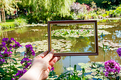 Water lilies with frame at Monet's garden ( Blurred flowers )  - p864m2200633 by Michiru Nakayama