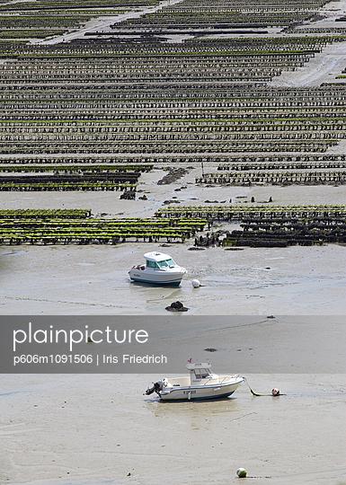 Austernbänke und Boote bei Ebbe, Cancale, Bretagne - p606m1091506 von Iris Friedrich