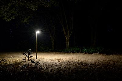 Nachts im Park - p067m1068339 von Thomas Grimm