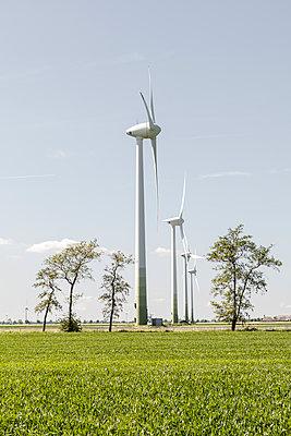 Windräder und Bäume - p893m2021684 von Thomas Ebert