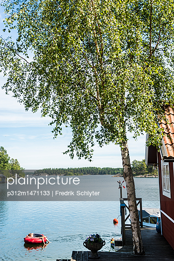 p312m1471133 von Fredrik Schlyter