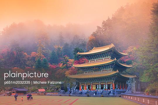 p651m2032335 von Michele Falzone