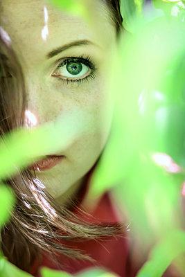 Eye through Folliage  - p1019m1425602 by Stephen Carroll
