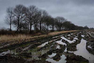 Matschiges Feld - p1132m2168064 von Mischa Keijser
