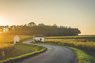 Vine Houses - p1402m2031285 by Jerome Paressant