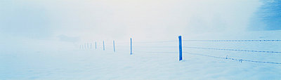 Fence in snow-covered landscape - p6750038 by Christian Bullinger