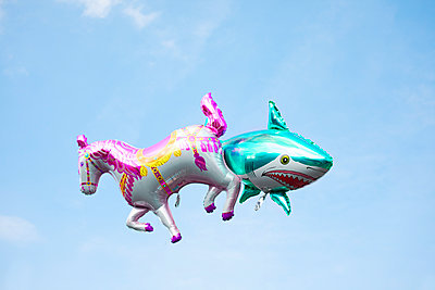 Hai und Pferd fliegen in der Luft - p045m1137265 von Jasmin Sander