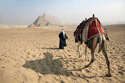 A Bedouin guide and camel approaching the Pyramids of Giza, UNESCO World Heritage Site, Cairo, Egypt,North Africa, Africa - p8712738 by Andrew McConnell