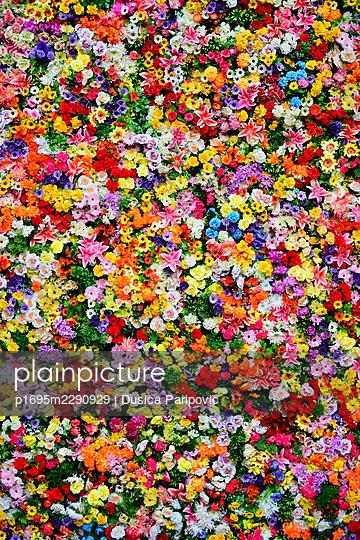 Sea of blossoms - p1695m2290929 by Dusica Paripovic