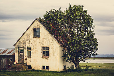 Old house and tree - p1084m986782 by Operation XZ