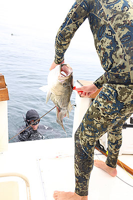 Man in spearfishing suit holding caught fish while friend swimming in sea by boat - p1166m1568878 by Cavan Images