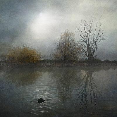 Kopf unter Wasser - p1633m2289757 von Bernd Webler