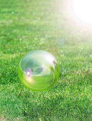 Soap bubble over lawn - p5142908f by HIROSHI TAKEZAWA