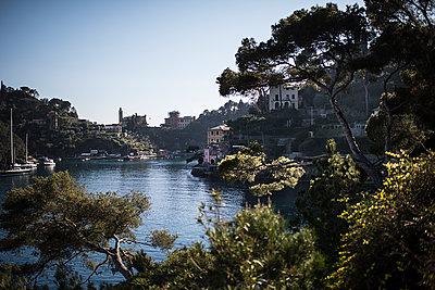 View of Portofino - p1007m1424569 by Tilby Vattard