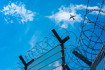 Überflieger - p229m2089462 von Martin Langer