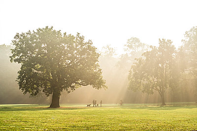 Morgens im Jenischpark - p488m946285 von Bias