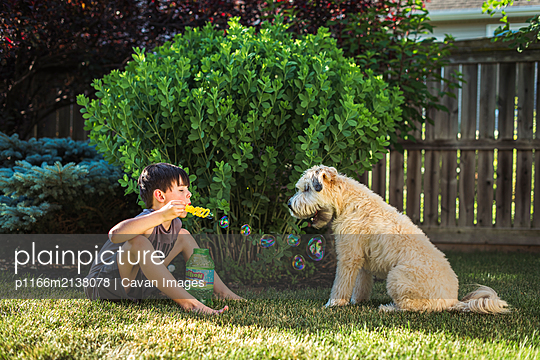 Young boy blowing bubbles for his dog in a backyard on a summer day. - p1166m2138078 by Cavan Images