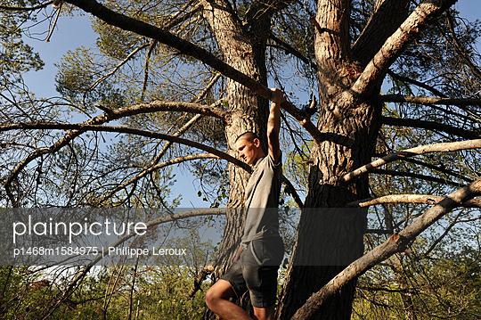 Jugendlicher klettert auf einen Baum  - p1468m1584975 von Philippe Leroux