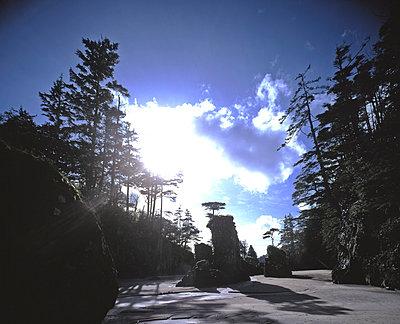 Vancouver Island - p1016m792624 von Jochen Knobloch