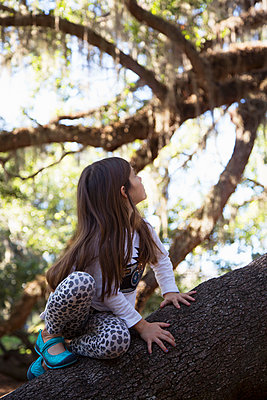 Girl climbing tree - p924m1513612 by Kinzie Riehm