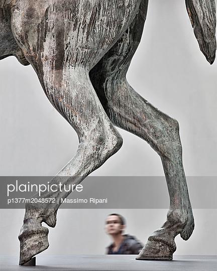 p1377m2048572 von Massimo Ripani