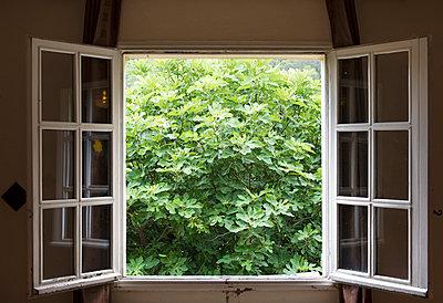 Opened window - p1041m1042203 by Franckaparis