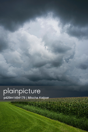 A thunderstorm over corn and grass fields, Oosterhout, North Brabant, Netherlands