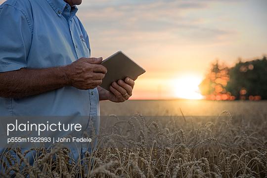 Caucasian man using digital tablet in field of wheat - p555m1522993 by John Fedele