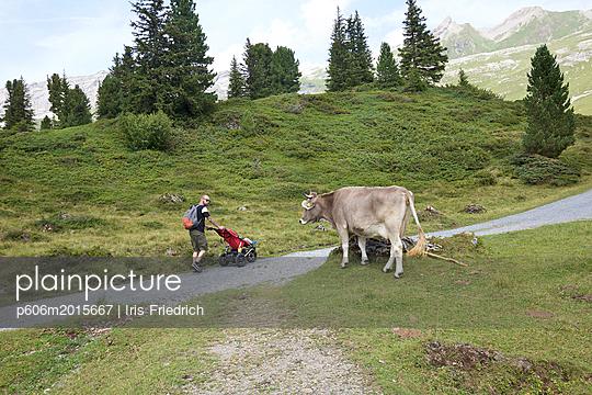 Begegnung mit einer Schweizer Kuh - p606m2015667 von Iris Friedrich