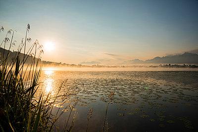 Germany, Bavaria, Fuessen, view to Hopfensee Lake at sunrise - p300m965587f by Walter G. Allgöwer