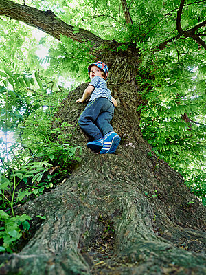 Kleiner Junge klettert auf Baum - p358m1217480 von Frank Muckenheim