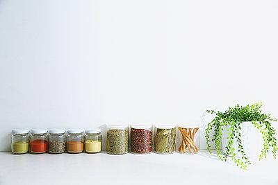 Assorted spices - p307m1006693f by Shingo Tosha
