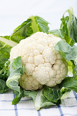 Freshcauliflower lying on checked tablecloth - p312m1551925 by Johner Images