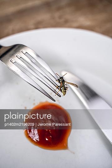 Wespe auf einer Gabel - p1402m2196209 von Jerome Paressant