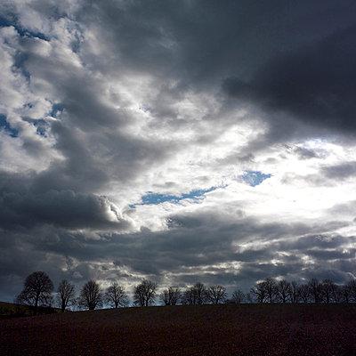 Farmland - p8130516 by B.Jaubert