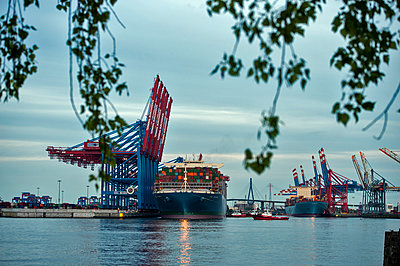 Container ship at Hamburg harbour - p229m1424607 by Martin Langer