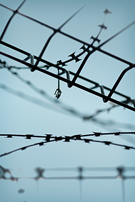 Razor wire and metal fence close up - p1228m2081799 by Benjamin Harte