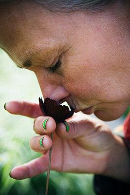 Woman smelling a flower, Sweden. - p31224373 by Lena Koller
