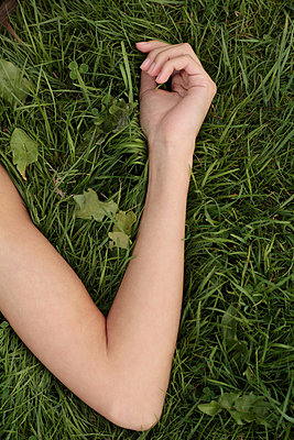 Im Grase liegen - p4830310 von Arne Gerson