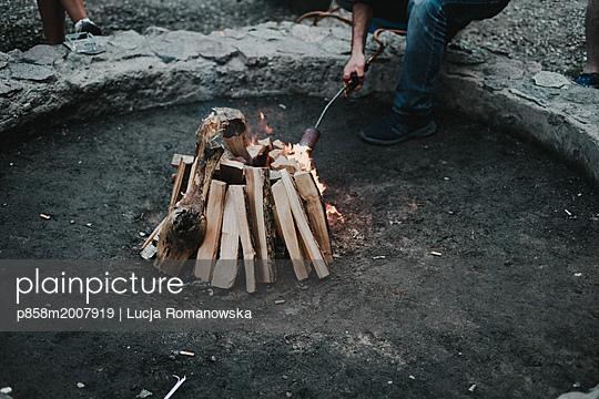 p858m2007919 by Lucja Romanowska