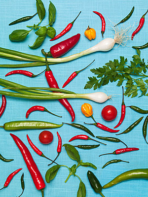Vegetables on blue background - p312m1121600f by Susanne Walstrom