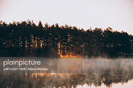 Forest lake at sunrise - p961m2211928 by Mario Monaco