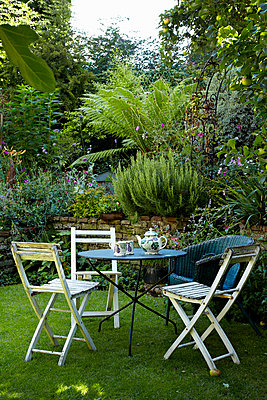 Back garden - p349m786718 by Alun Callender