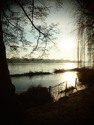 Alster river against the light - p132m1538507 by Peer Hanslik