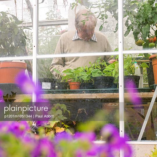 Mann in seinem Garten - p1201m1051344 von Paul Abbitt