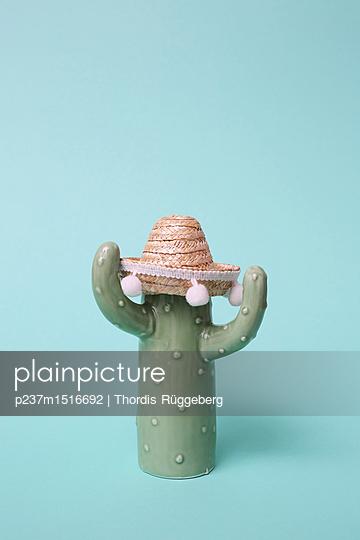 Kaktus mit Sombrero - p237m1516692 von Thordis Rüggeberg
