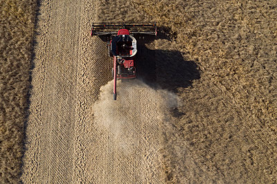 Aerial view combine harvester harvesting sunny crop - p1192m2040279 by Hero Images